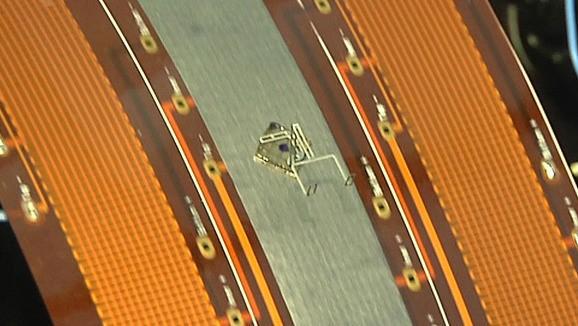昆虫大小的微型机器人问世 可制作其他机器-广州磐众智能科技有限公司