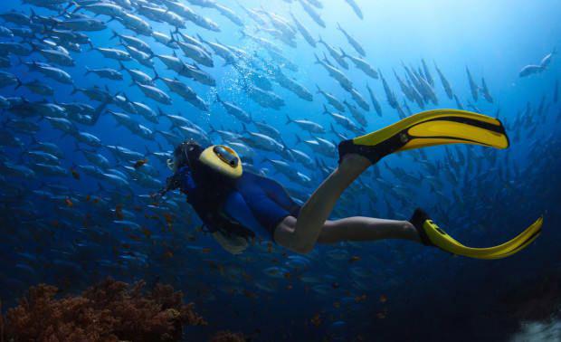 潜水神器SUBBE:秒变变身潜水侠--广州磐众智能科技有限公司