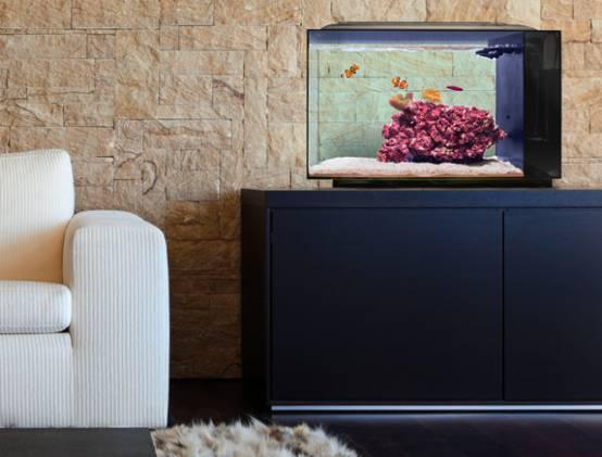 呵护鱼儿健康的智能水族箱BIOTA--广州磐众智能科技有限公司